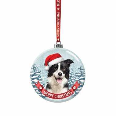 Fout kerstkado dieren kerstbal 7 cm hond border collie