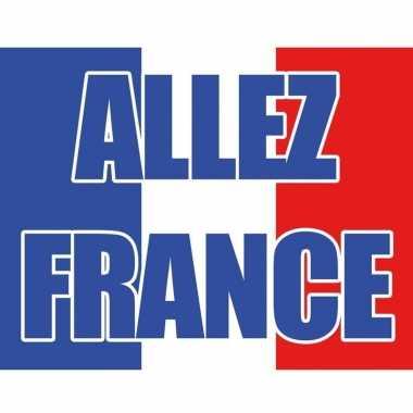 Franse vlag 70 x 100 cm