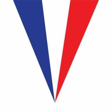 Franse vlaggenlijnen 5 meter