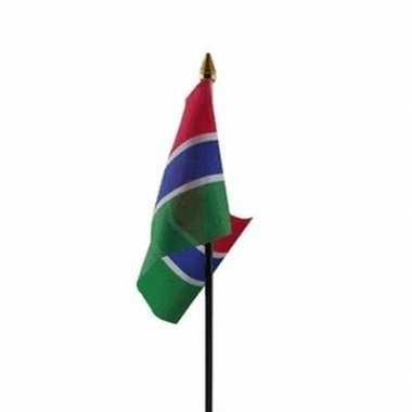 Gambia vlaggetje met stokje