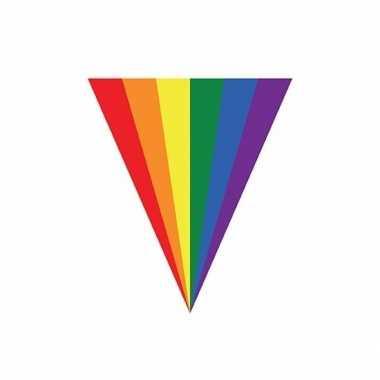 Gay pride slinger vlaggenlijn 5 m