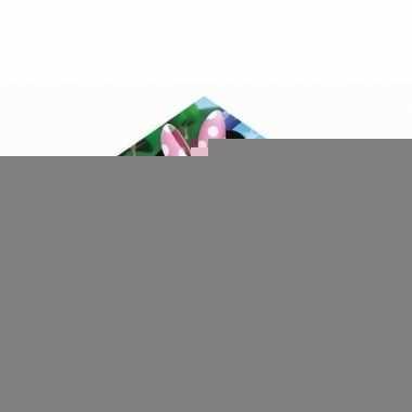 Gekleurde minnie mouse vlieger voor kinderen