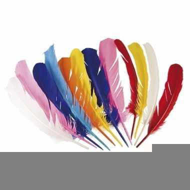 Gekleurde veren van 30 cm lang