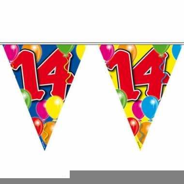 Gekleurde vlaggenlijn 14 jaar