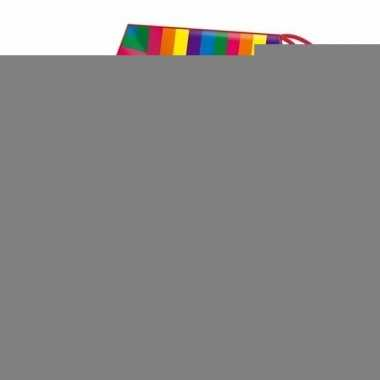 Gekleurde vlieger voor kinderen regenboog