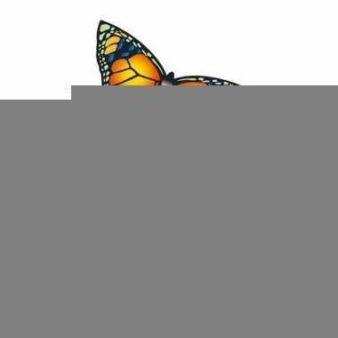 Gekleurde vlieger voor kinderen vlinder