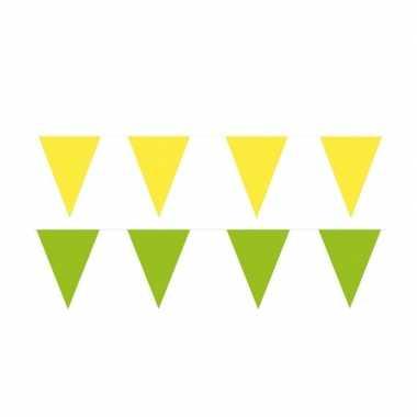 Gele/groene feest punt vlaggetjes pakket 60 meter