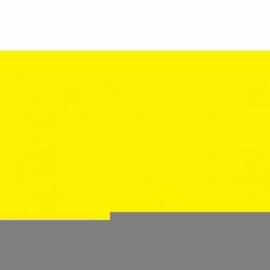 Gele vlag van polyester 150 x 90