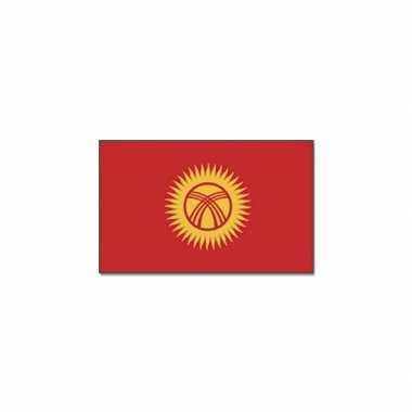Gevelvlag kirgizie