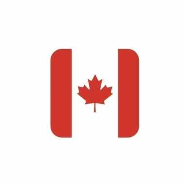 Glas viltjes met canadese vlag 15 st