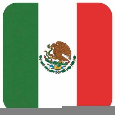 Glas viltjes met mexicaanse vlag 15 st