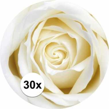 Glas viltjes met witte roos 30x