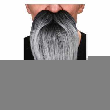 Grijze puntige baard met snor