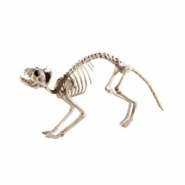 Halloween - kat/poes skelet halloween/horror decoratie 60 cm