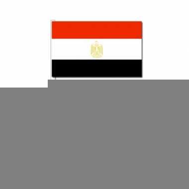 Handvlag egypte set van 50