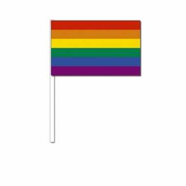 Handvlag regenboog 12 x 24 cm