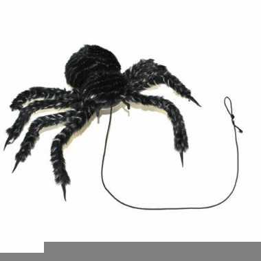Harige horror spin van 50 cm