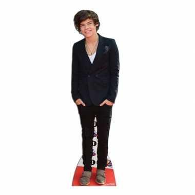 Harry styles decoratie borden