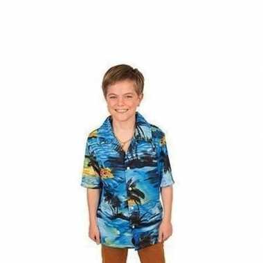 Blouse Overhemd.Hawaii Blouse Overhemd Blauw Voor Jongens Alltrends Nl