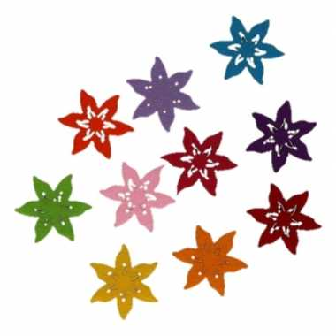 Hobby vilt 10 gekleurde vilten ster bloemen 4 cm