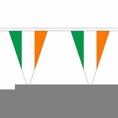 Ierland landen punt vlaggetjes 5 meter
