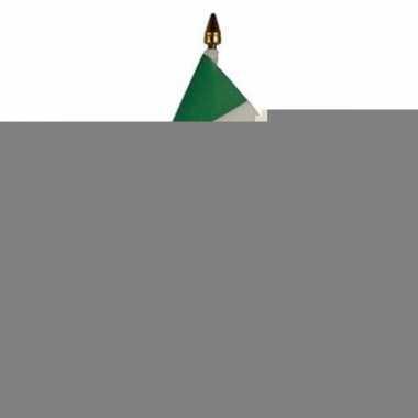 Ierland vlaggetje met stokje