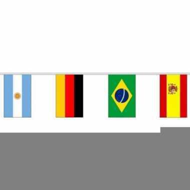 Internationale vlaggenlijn 10 meter