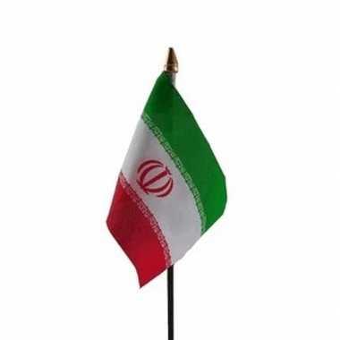 Iran vlaggetje met stokje