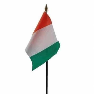 Ivoorkust vlaggetje met stokje