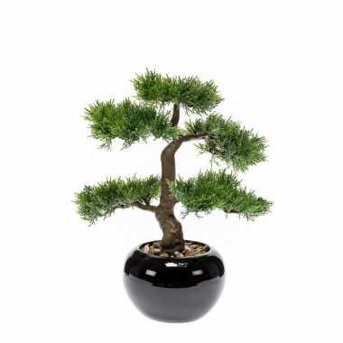 Kantoor kunstplant bonsai boom in zwarte pot 16 cm