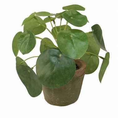 Kantoor kunstplant pilea groen in pot 13 cm