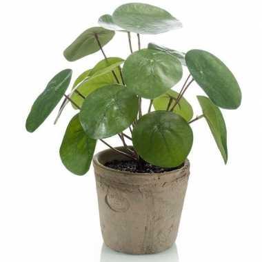 Kantoor kunstplant pilea pannekoekplant groen in pot 25 cm