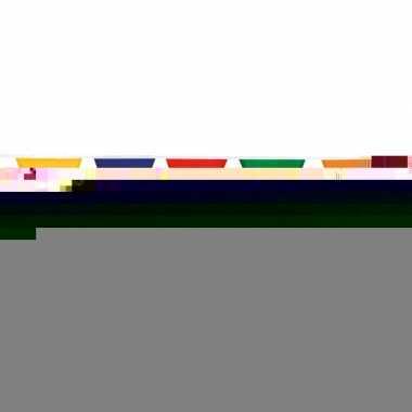 Katoenen vlaggenlijn veelkleurig 10 meter
