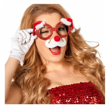 Kerst bril met neus