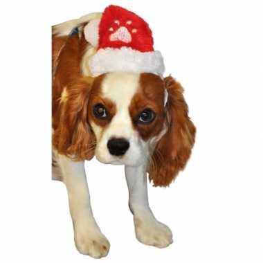 Kerstmannen muts voor huisdieren