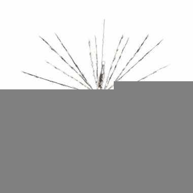 Kerstverlichting led ster warm wit binnen/buiten 70 cm