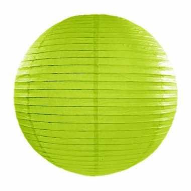Lampion 35 cm groen