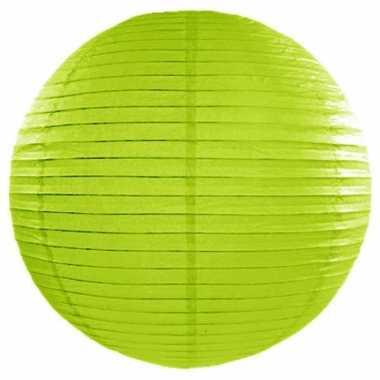 Lampion 50 cm groen