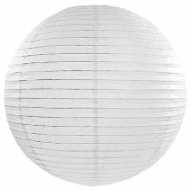 Lampion 50 cm wit