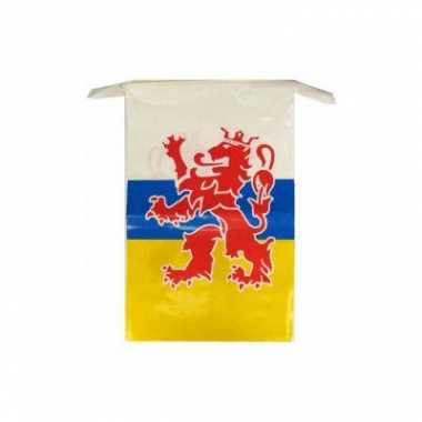 Limburg vlaggenlijn 10 meter
