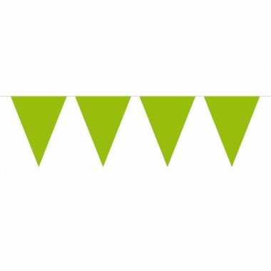 Lime groene vlaggentjes slinger 10 meter