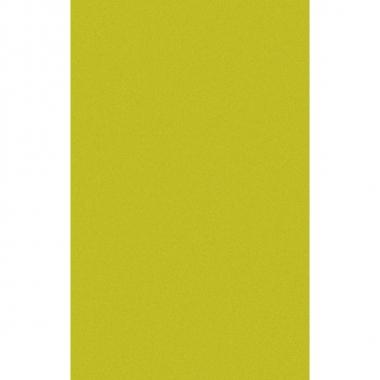 Limegroen tafellaken/tafelkleed 138 x 220 cm herbruikbaar