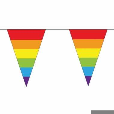 Luxe regenboog vlaggetjes voor binnen en buiten