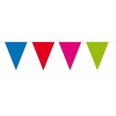 Meerkleurige vlaggentjes slinger 10 meter