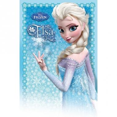 Meisjes poster anna elsa frozen