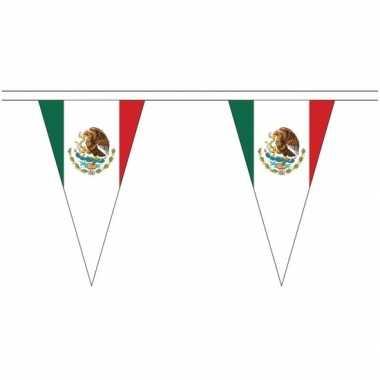 Mexico landen punt vlaggetjes 5 meter