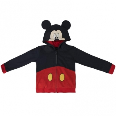 Mickey mouse hooded sweatshirt