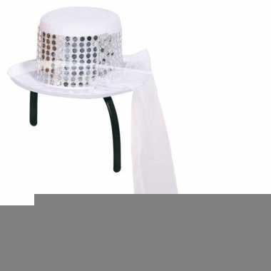 Mini hoedje met sluier op diadeem