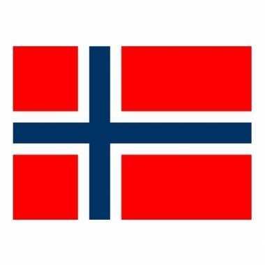 Mini vlag noorwegen 60 x 90 cm