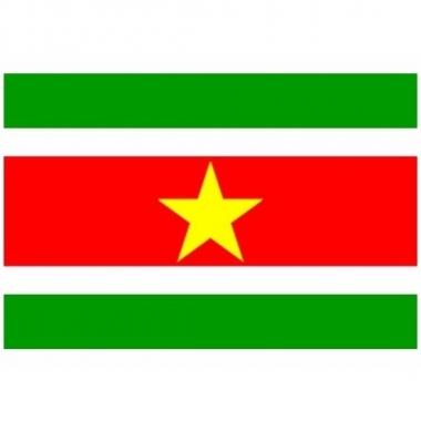 Mini vlag suriname 60 x 90 cm